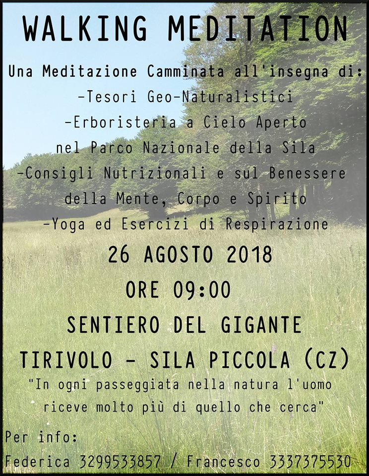 Walking-Meditation-Dr-Francesco-Marino