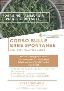 Corso sulle erbe spontanee, tra foraging, alimurgia e wild food