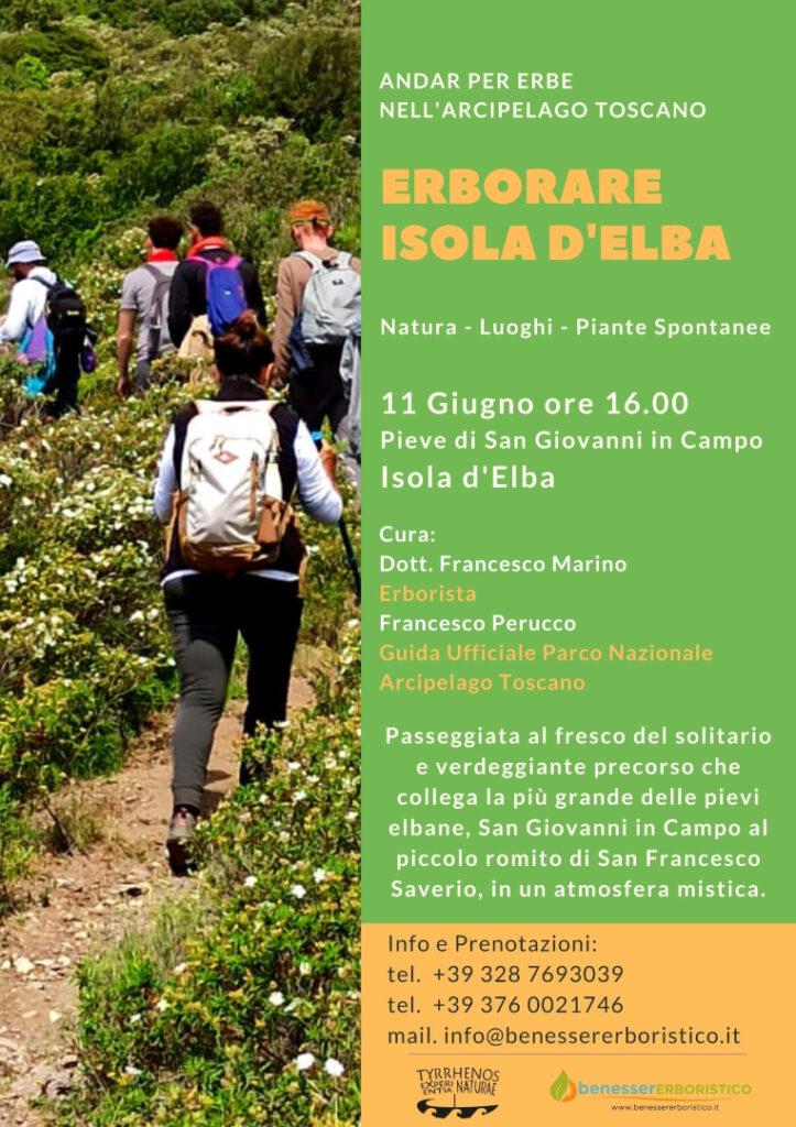 Erborare Isola d'Elba - La pratica del foraging con le piante spontanee dell'Isola d'Elba