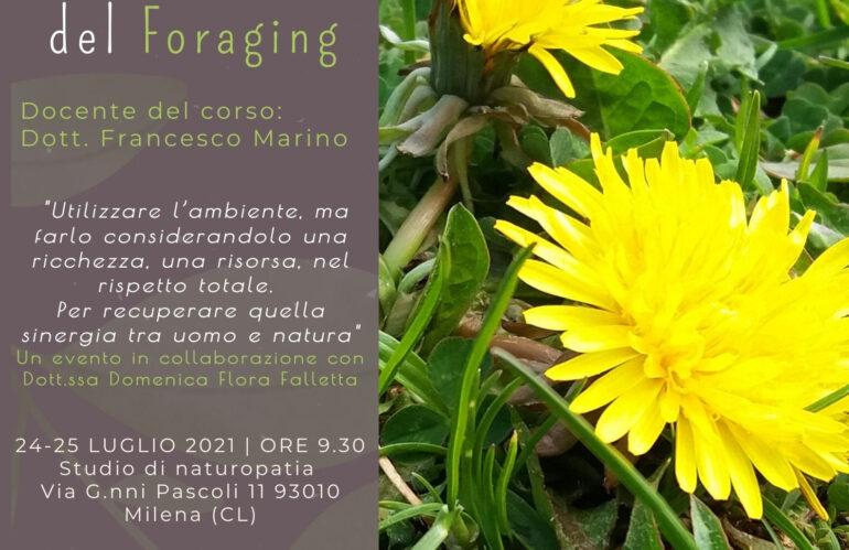 Alla scoperta del foraging